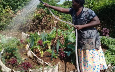 20 Years of Sustainable Livelihoods in Uganda